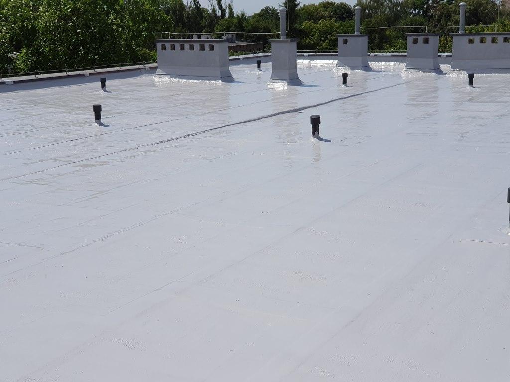 membrana dachowa, membrana na dach, alchimica